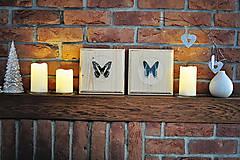 Obrázky - Urania leilus- motýľ na drevenej podložke - 11286625_