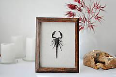 Obrázky - škorpión v rámčeku - 11290138_