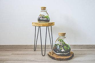 Nádoby - Rastlinné terárium - 11298733_