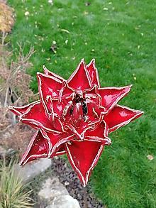 Dekorácie - Kvet červený č.2 zápich - 11308293_