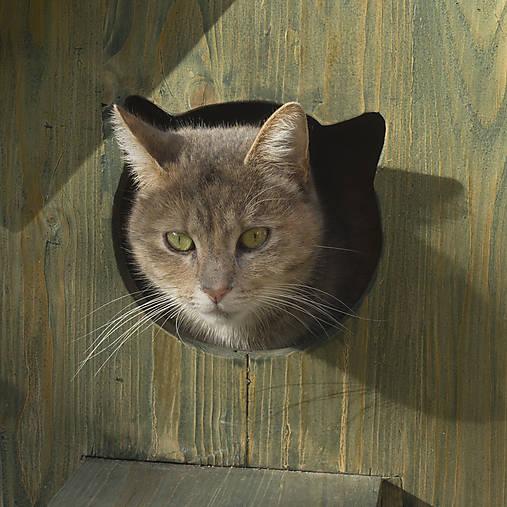 Mačací domček na zimu