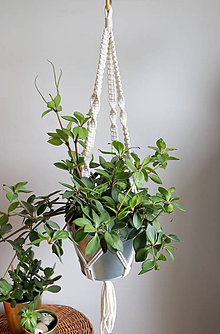 Dekorácie - Makrame držiak na kvetináč // Rozmarín - 11324417_