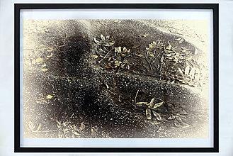Obrazy - Jesenná myšlienka - 11327214_