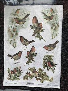 Papier - vtáčiky - 11329489_