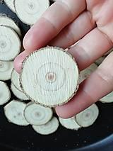 Polotovary - Plátky z vianočného stromčeka 4 (priemer 4,3 cm) - 11337878_