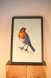 Obrazy - Vtáčik - maľba anilinkami - 11345025_