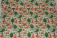 Textil - Látka Líštička kmotrička - 11343096_