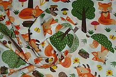 Textil - Látka Líštička kmotrička - 11343099_