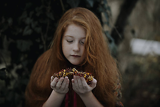 Ozdoby do vlasov - Venček Sinapi - 11343928_
