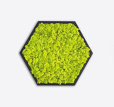 Obrazy - Machový obraz Hexagon - 11344478_