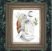 Grafika - Print z originálku ilustrácie Nočné Sovy - 11349727_