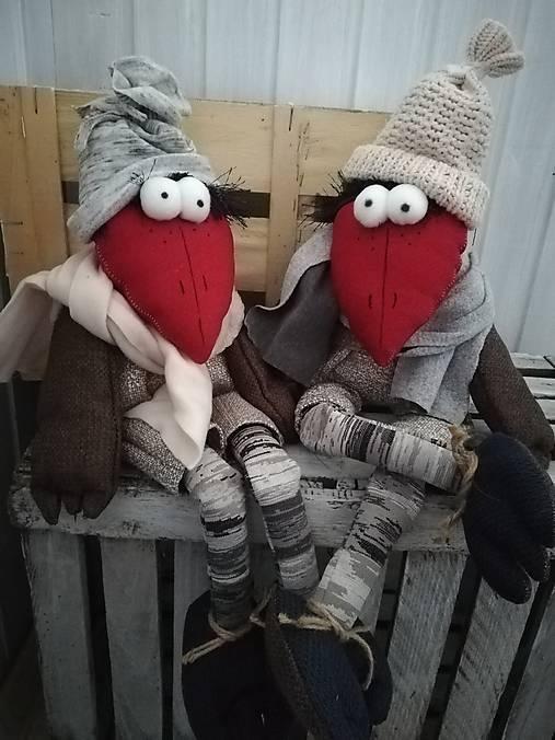 Zimné vrany