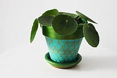 Nádoby - Mini terakotový kvetináč - Pod vodnou hladinou - 11362835_