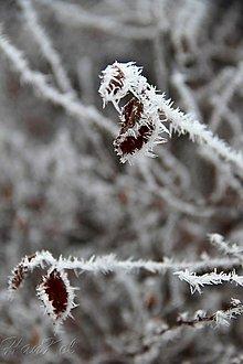 Grafika - Zima sa blíži ... - 11362842_