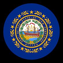 Odznaky/Brošne - New Hampshire vlajka - 11368389_
