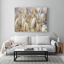 Obrazy - OVOS fotoplátno 60x40 cm - 11370664_