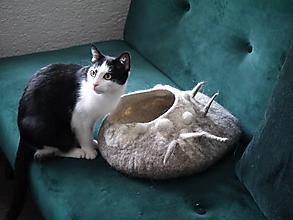 Pre zvieratká - Pelech pre mačku Vincko II. - 11385565_