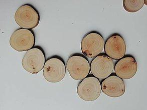 Materiál ručne robený - Drevené plátky - jabloň (priemer 3,5 - 4 cm) - 11382678_