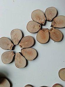 Materiál ručne robený - Drevené plátky - jabloň (s nožičkou - 3 x 4 cm (balenie 12 ks)) - 11382687_