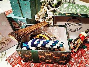 Pre zvieratká - Vianočný darček pre domáceho miláčika - 11386897_