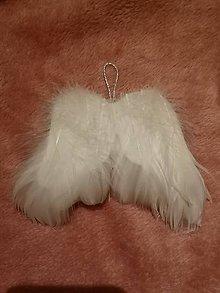 Dekorácie - Anjelské krídla - 11387752_