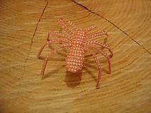 Odznaky/Brošne - Pavúčik - 11390579_