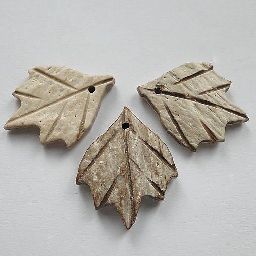 List kokos 2,5cm-1ks (svetlá)