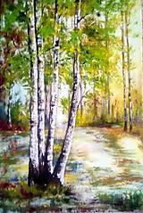 Obrazy - brezy - 11393251_