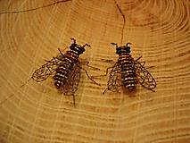 Odznaky/Brošne - Včielka ♥ - 11397784_