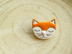 Odznaky/Brošne - brošňa mačka ryšavá - 11396303_