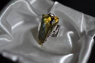 Prstene - natura - 11396017_