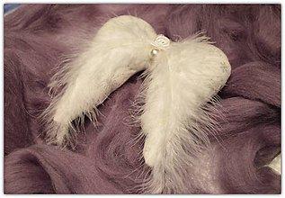 Dekorácie - Anjelske krídla - 11401222_