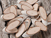 - Brezové lupienky - balenie (bez výraznej kresby dreva - 19 ks) - 11398577_