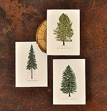 Papiernictvo - Pohľadnice - ihličnatý set 3ks - 11402511_
