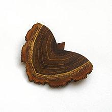 Odznaky/Brošne - Drevená brošňa - motýľ agátový - 11405015_