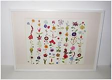 Obrazy - Obraz kvety - 52,5 x 73 cm - 11413429_