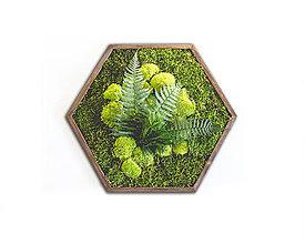 Obrazy - Machový obraz Hexagon - 11415878_