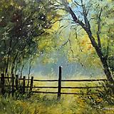 Obrazy - Ve stínu zahrady - 11423731_