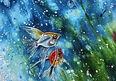 Oblečenie - rybičky ... tričko pre akvaristu - 11429514_