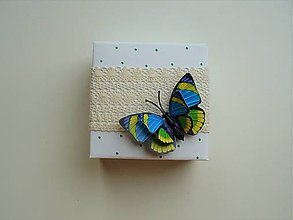 Krabičky - krása motýľov - 11435107_