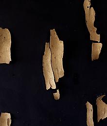Obrazy - decomposed. // obraz v priestore // akryl a kusy dreva na plátne - 11443121_