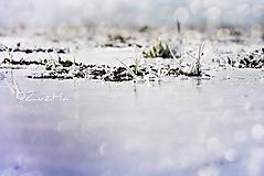 Fotografie - Januárové polia - 11449020_