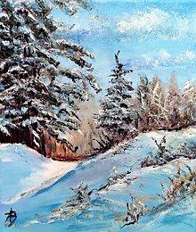 Obrazy - Pod snehom - 11450111_