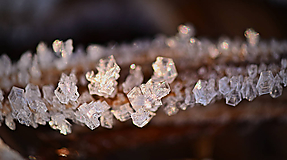Fotografie - Kryštály ľadu - 11459123_