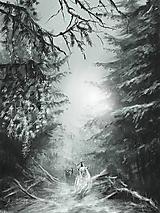 Obrazy - cesta mrázikom - 11459120_