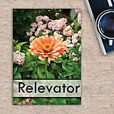 Papiernictvo - Natur slovníček - oranžový kvet - 11462555_