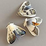Odznaky/Brošne - Nočný motýl I - 11470614_