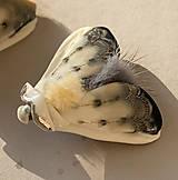 Odznaky/Brošne - Nočný motýl I - 11470668_
