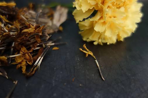 domáce semienka aksamietnice- ZĽAVA