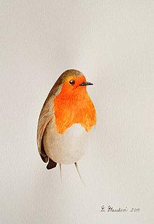 Obrazy - Vtáčik - maľba akvarelom - 11478379_